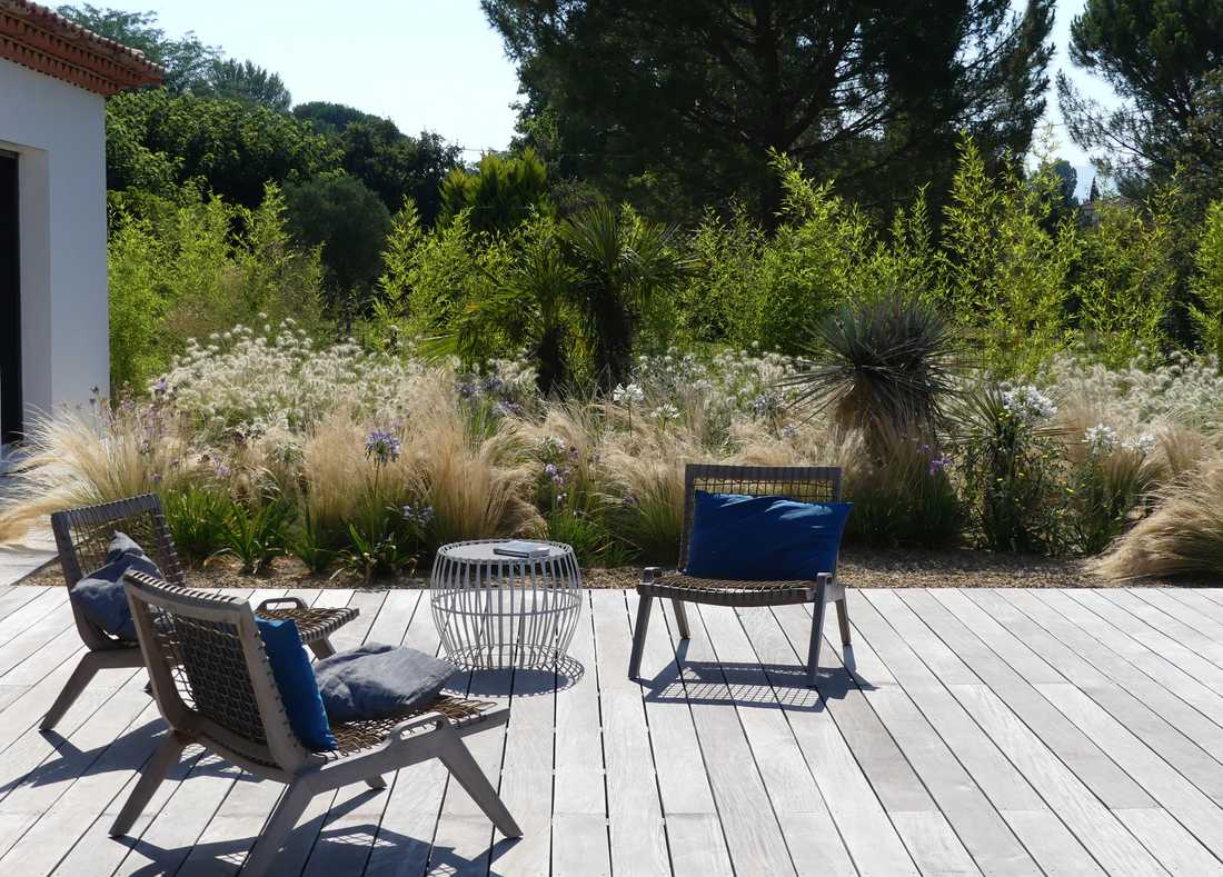 Mediterranean garden with Provencal vegetation in Pays de la Loire